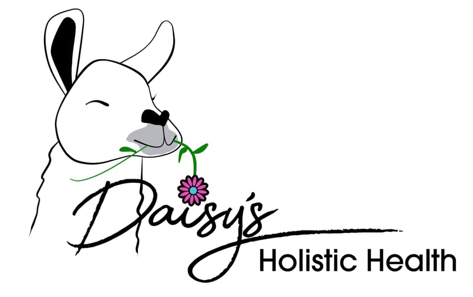 Daisys Holistic Health